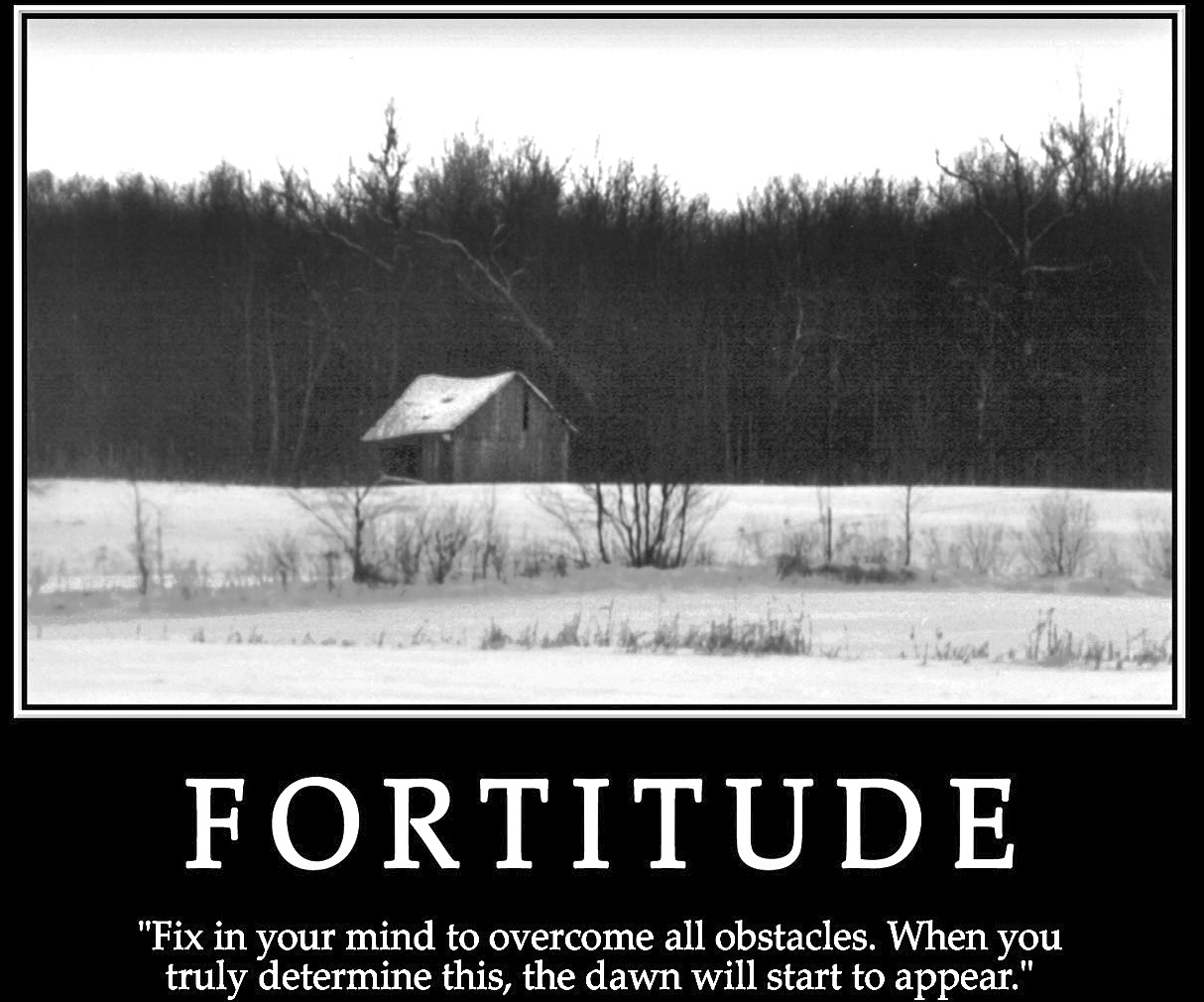 Fortitude Quotes From ...